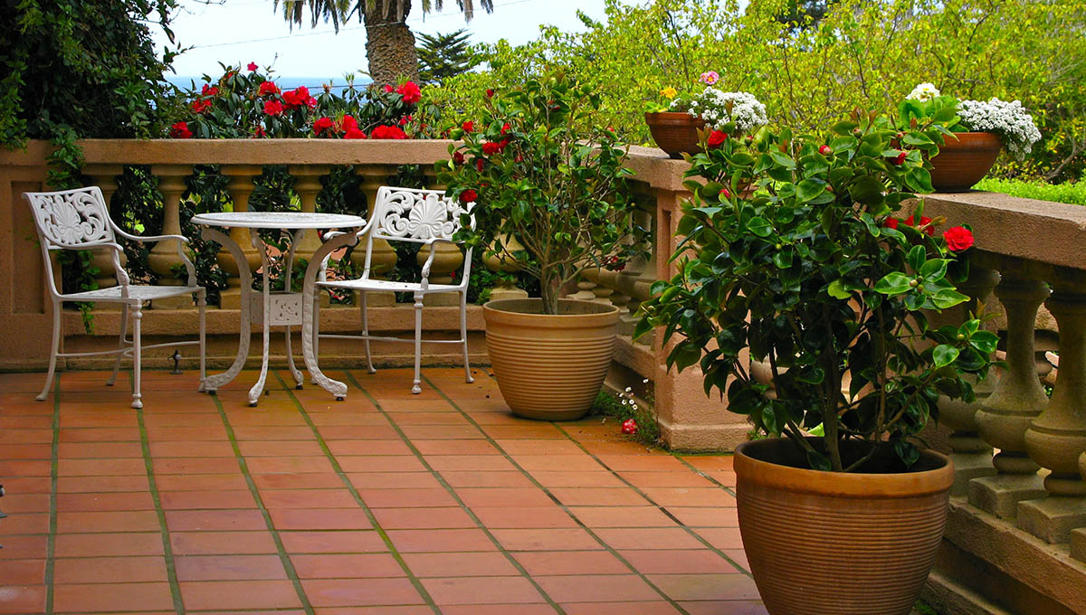 Teras ve Balkon Bahçeleri Peyzaj Uygulama
